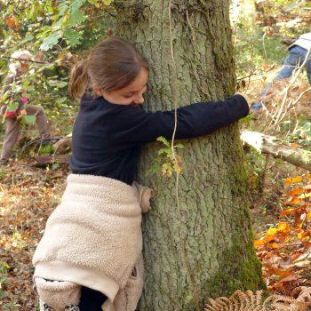loraline-calin-arbre-web