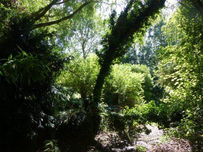 sieste-pleine-nature-web